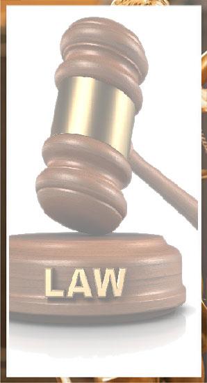 law5-QD939